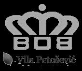 msm petsoevic